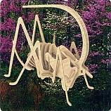 나무공작/귀뚜라미