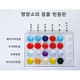 20%↓> 영양소검출반응실험키트/4인용