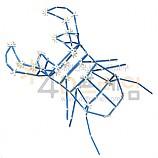 4D프레임 곤충-사슴벌레