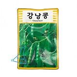 강낭콩 씨앗
