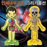 인체내부구조그리기풍선/컬러룬3D인체색칠풍선/1인용