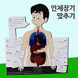 인체장기맞추기/5인용