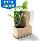 콩과 옥수수 성장비교실험/1인용