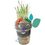 잔디인형/식물의한살이/10인용
