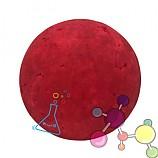 빨강색 칼라스티로폼구/스타이로폼공/스치로폼공