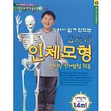 키 1m 40cm의 3차원 인체모형
