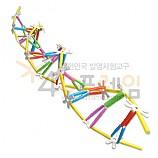 4D프레임 DNA 2