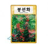 봉숭아씨앗/봉선화